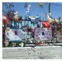 The Butterfly Memorial on Western Blvd. Overpass
