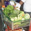 World Harvest Food Bank